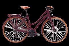 Damen Trekking & City Bikes
